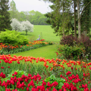 PASHLEY MANOR GARDENS Herbaceous Borders By Kate Wilson 1