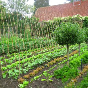 PASHLEY MANOR GARDENS Late Spring Early Summer Kitchen Garden By Kate Wilson