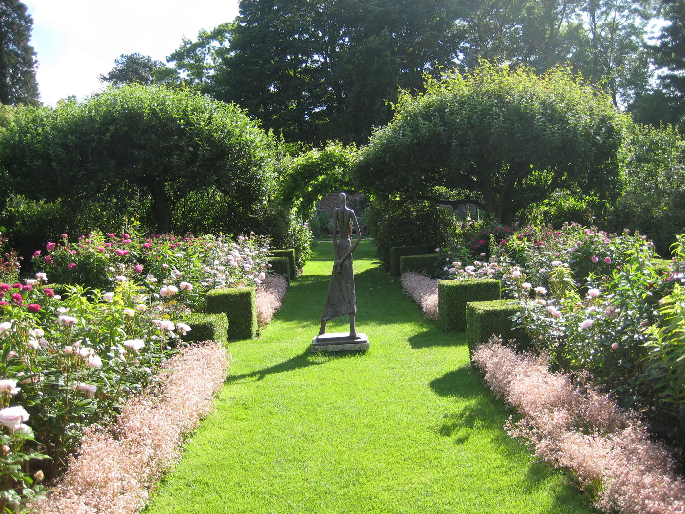Roses In Garden: Pashley Manor Gardens