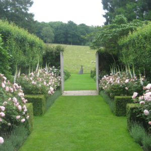 Pashley Manor Gardens Rose Walk By Kate Wilson