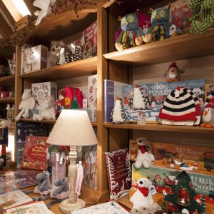 Pashley Manor Gardens Christmas Shop By Chris Price