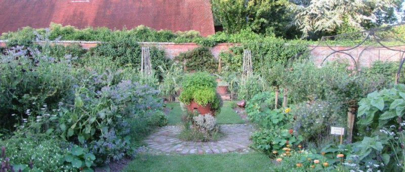 Kitchen Garden Week
