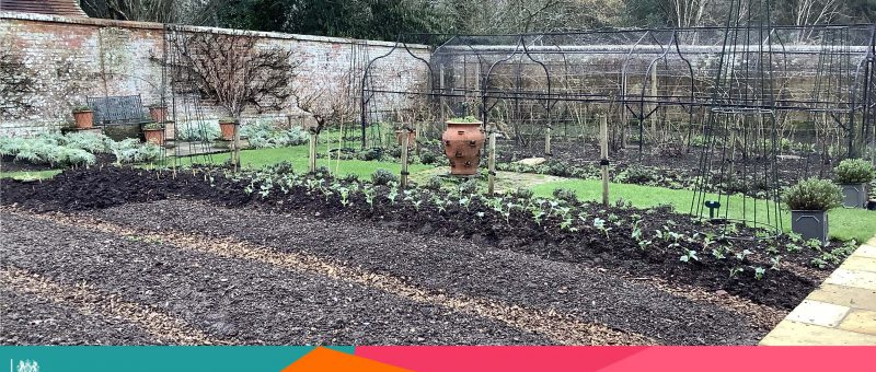 Culture Recovery Fund And Our Kitchen Garden