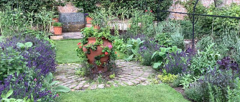Kitchen Garden Week